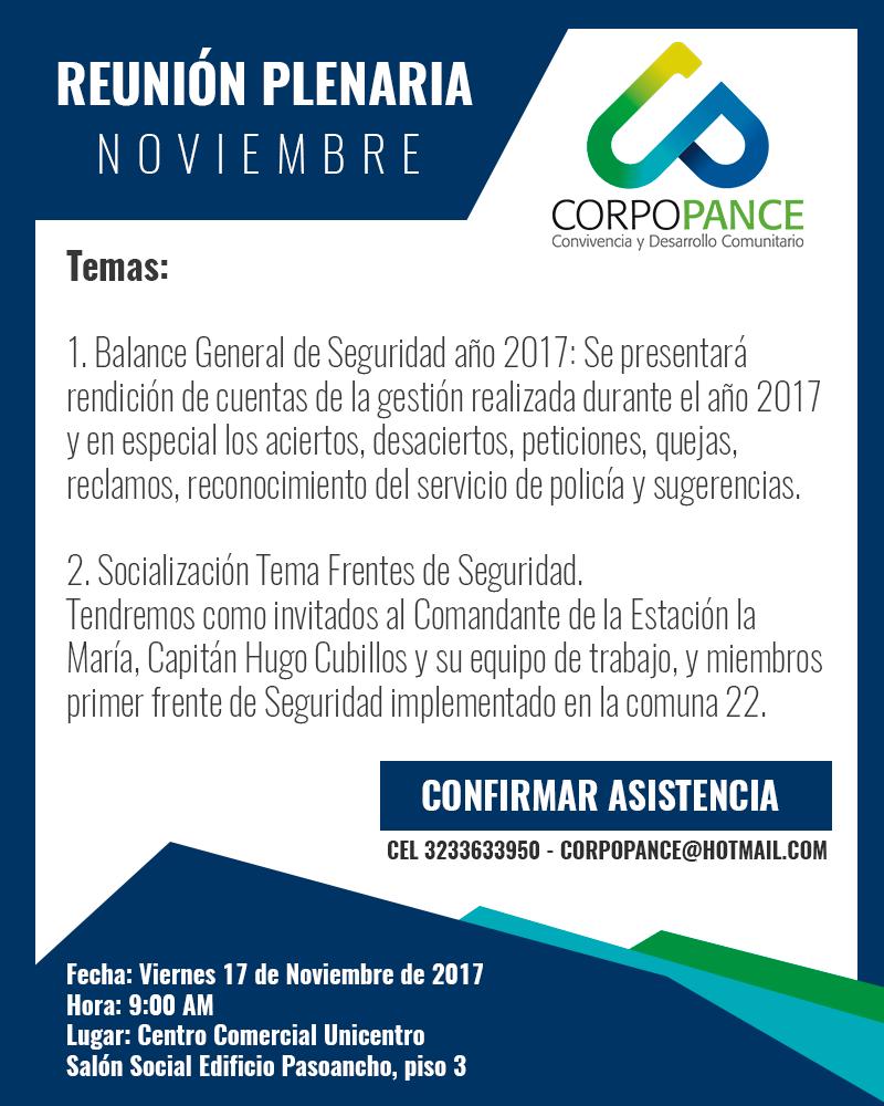 Reunion Plenaria Noviembre 2017